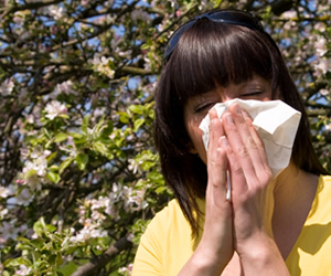 Sneezing - Allergic Rhinitis Information